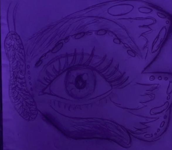 Beauty is in the Eye
