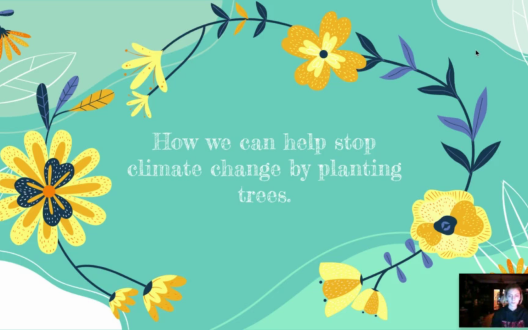 How We Can Help Stop Climate Change By Planting Trees