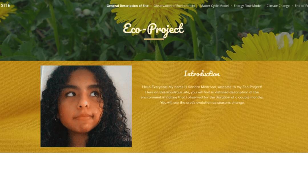 Sandra's Eco-Project