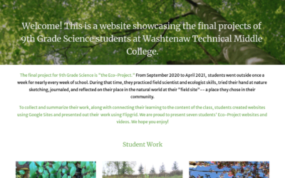 The Eco-Project: A Yearlong Study of a Field Site