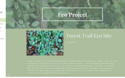Kasydy's Eco-Project