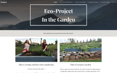 Liviana's Eco-Project