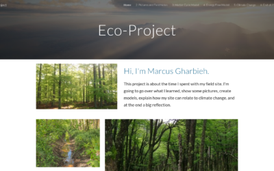 Marcus's Eco-Project