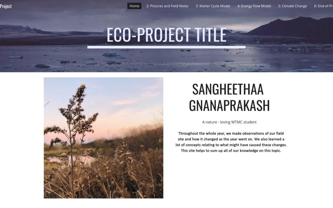 Sangheethaa's Eco-Project