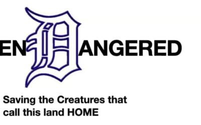 Detroit Endangered Project