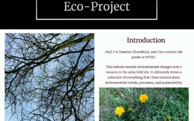 Tasmiea's Eco-Project